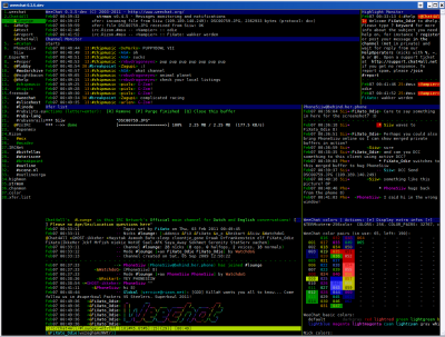 IRC Clients-Weechat-0.3.5-dev-Lounge-colors-higmon-chanmon-xfer-horizontal buffers-merged private buffers.png
