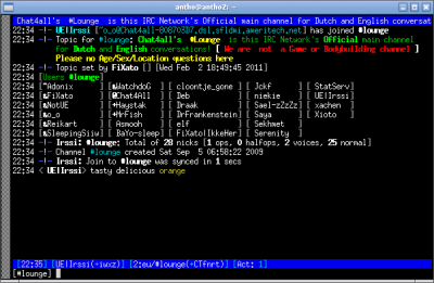 IRC Clients-irssi-0.8.15-DebianSqueeze.png